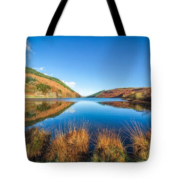 Autumn Lake Tote Bag by Adrian Evans