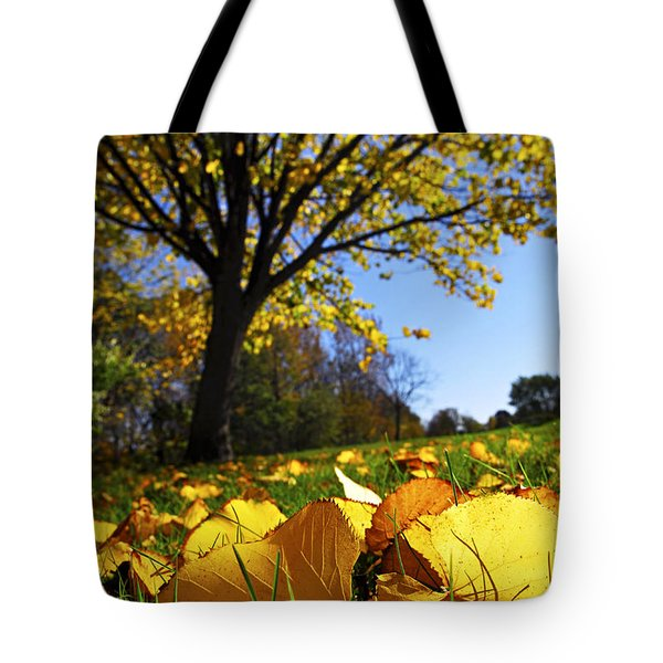 Autumn Landscape Tote Bag by Elena Elisseeva