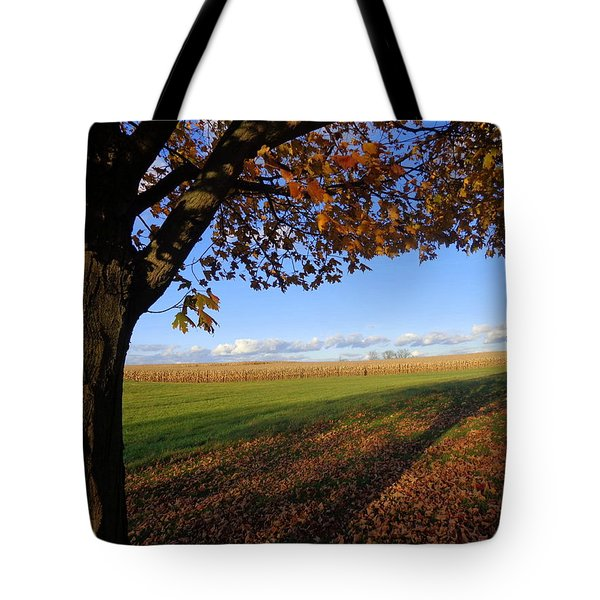 Autumn Landscape Tote Bag by Joseph Skompski