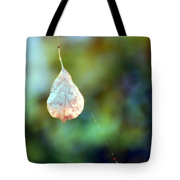 Tote Bag featuring the photograph Autumn Leaf Suspended by Linda Cox