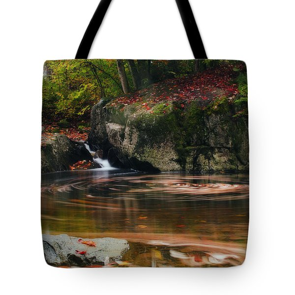 Autumn Leaf Trails Tote Bag