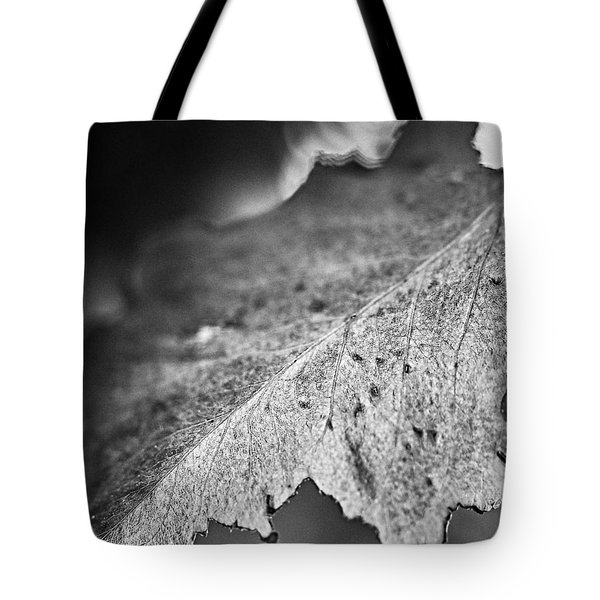 Autumn Leaves B And W Tote Bag