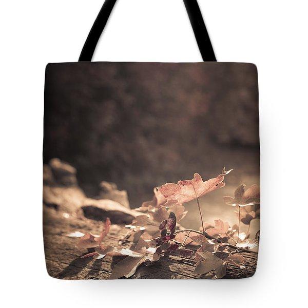 Autumn Leaves Tote Bag by Amanda Elwell