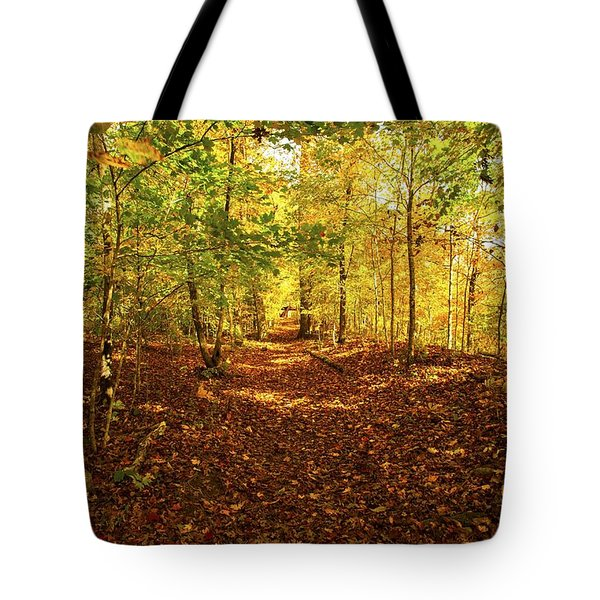 Autumn Leaves Pathway  Tote Bag by Jerry Cowart