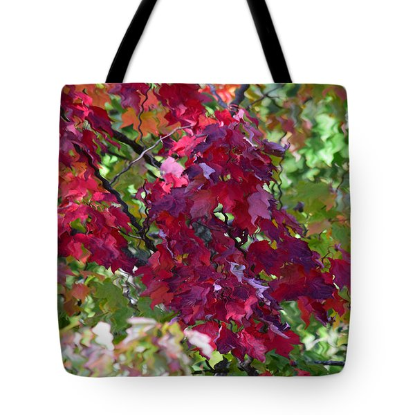 Autumn Leaves Reflections Tote Bag