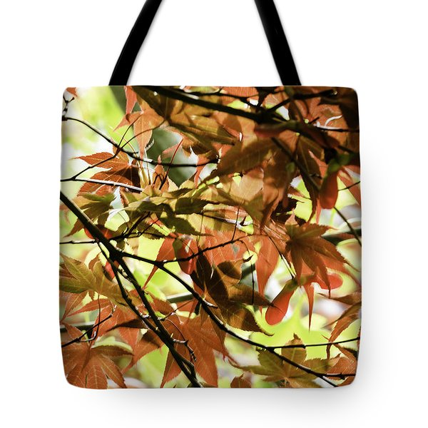 Tote Bag featuring the photograph Autumn Leaves by Richard J Thompson