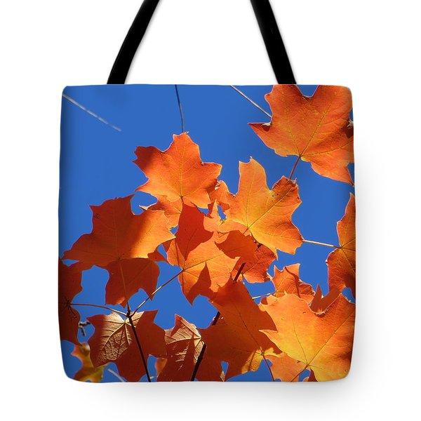 Autumn Leaves Tote Bag by Rita Mueller