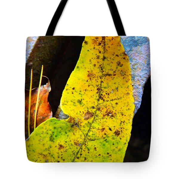 Autumn Leaves Tote Bag by Robyn King