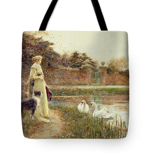 Autumn Leaves Tote Bag by Thomas James Lloyd