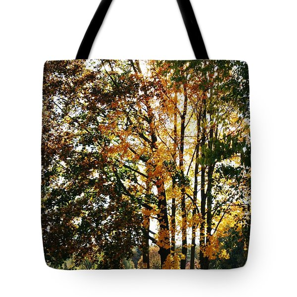 Autumn Light Tote Bag