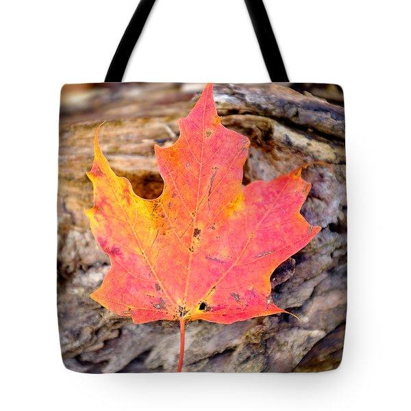 Autumn Maple Leaf On A Log Tote Bag