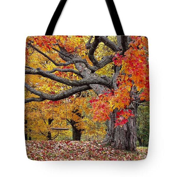 Tote Bag featuring the photograph Autumn Memories by Alan L Graham
