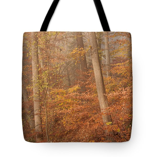 Tote Bag featuring the photograph Autumn Mist by Patrice Zinck