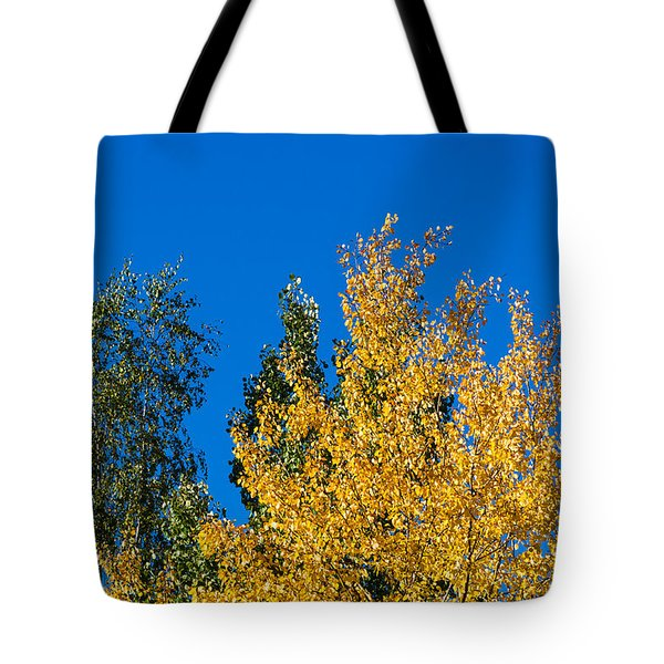 Autumn Mix 2 - Featured 3 Tote Bag by Alexander Senin