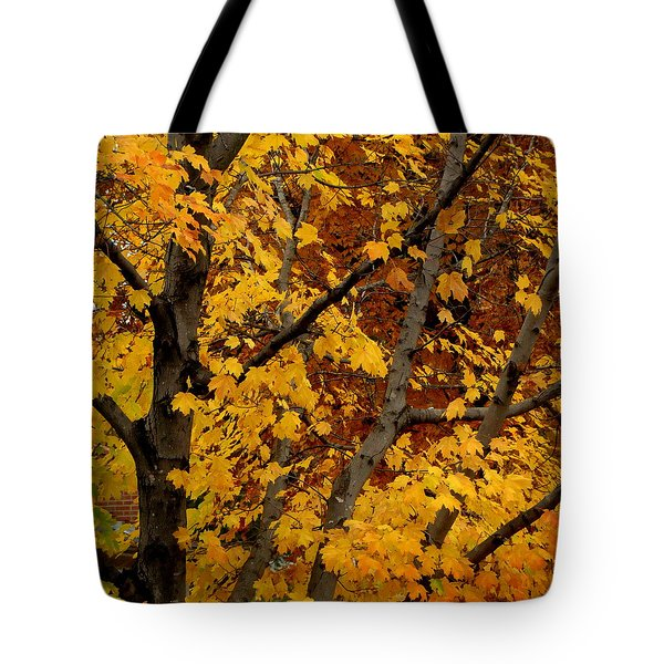 Autumn Moods 21 Tote Bag