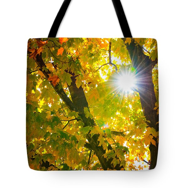 Tote Bag featuring the photograph Autumn Morn by Dee Dee  Whittle