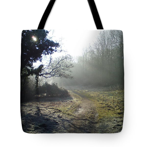 Autumn Morning 2 Tote Bag by David Stribbling