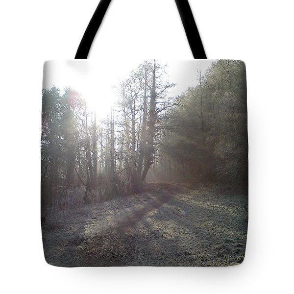 Autumn Morning 3 Tote Bag by David Stribbling