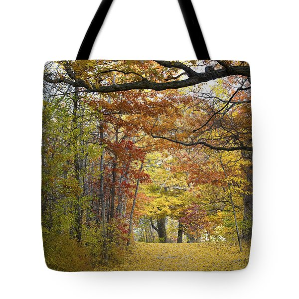 Autumn Nature Trail Tote Bag