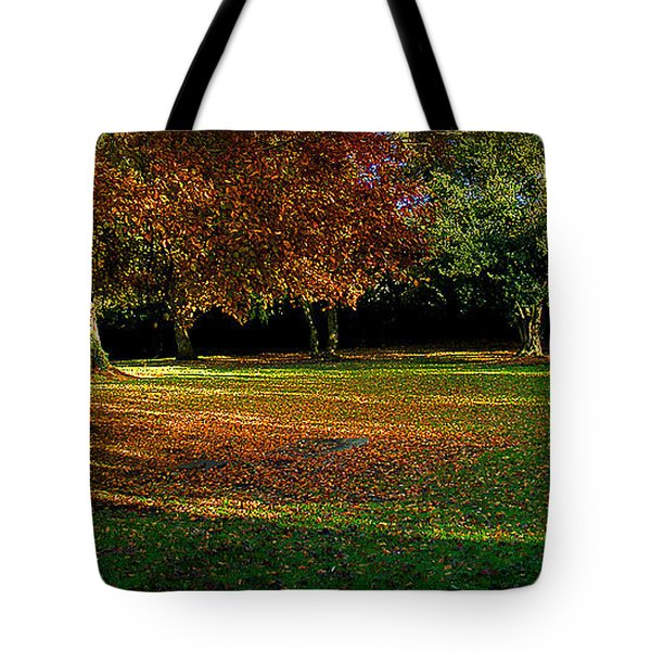 Tote Bag featuring the photograph Autumn by Nina Ficur Feenan