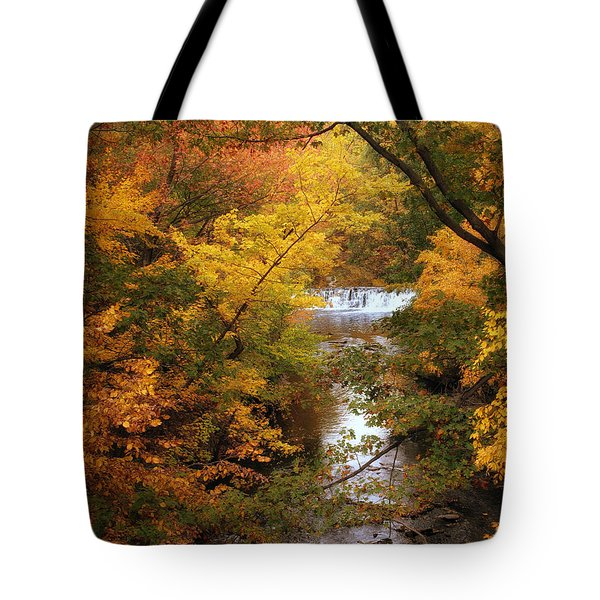 Tote Bag featuring the photograph Autumn On Display by Jessica Jenney