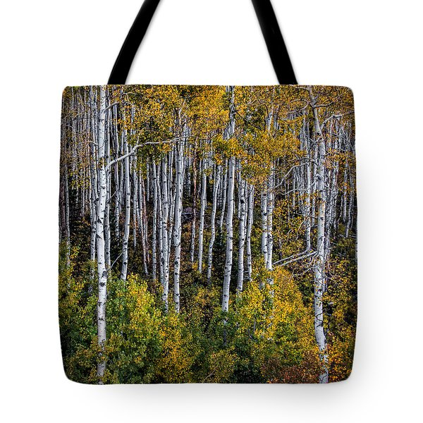 Tote Bag featuring the photograph Autumn On Mcclure Pass by Ken Smith