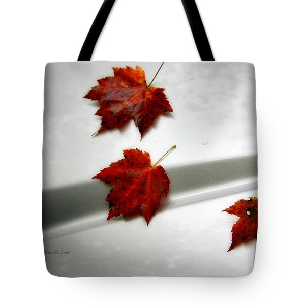 Autumn On The Car Tote Bag by Joan Bertucci