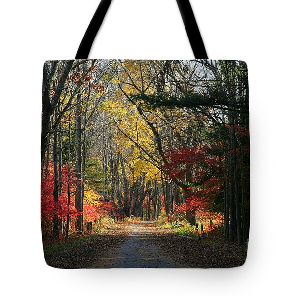 Autumn Paths    No.2 Tote Bag
