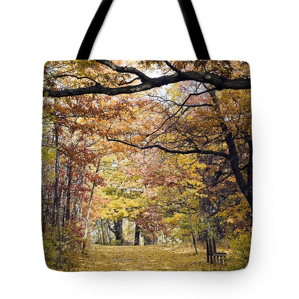 Autumn Pedestrian Path Tote Bag