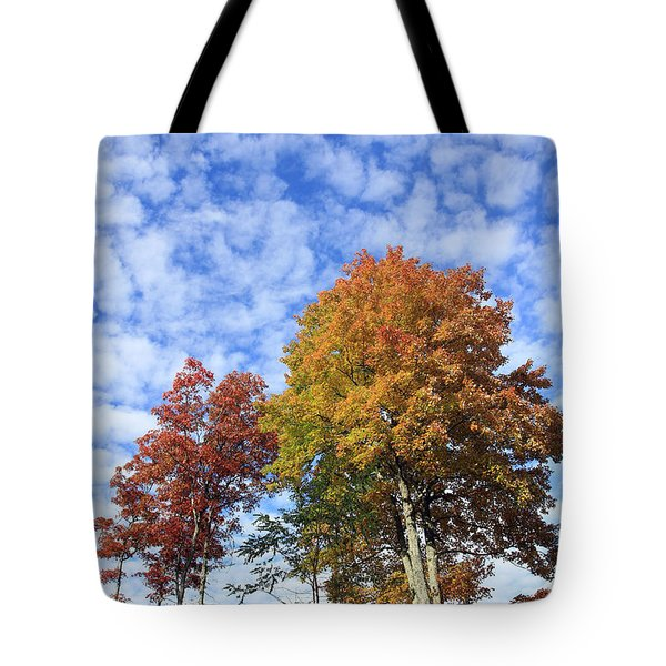 Autumn Perfection Tote Bag