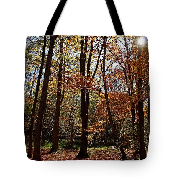 Tote Bag featuring the photograph Autumn Picnic by Debbie Oppermann