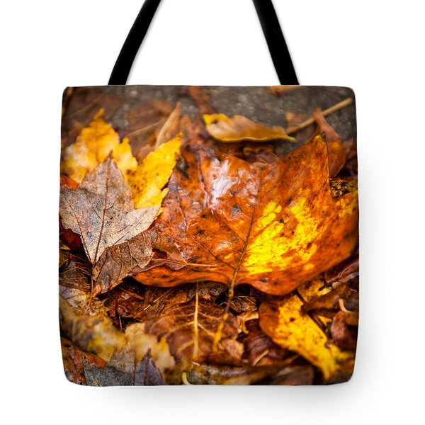 Autumn Pile Tote Bag