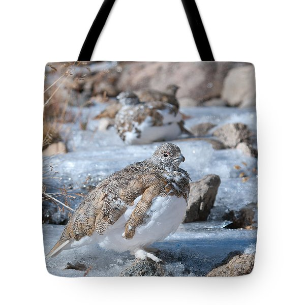 Autumn Plumage White-tailed Ptarmigan Tote Bag