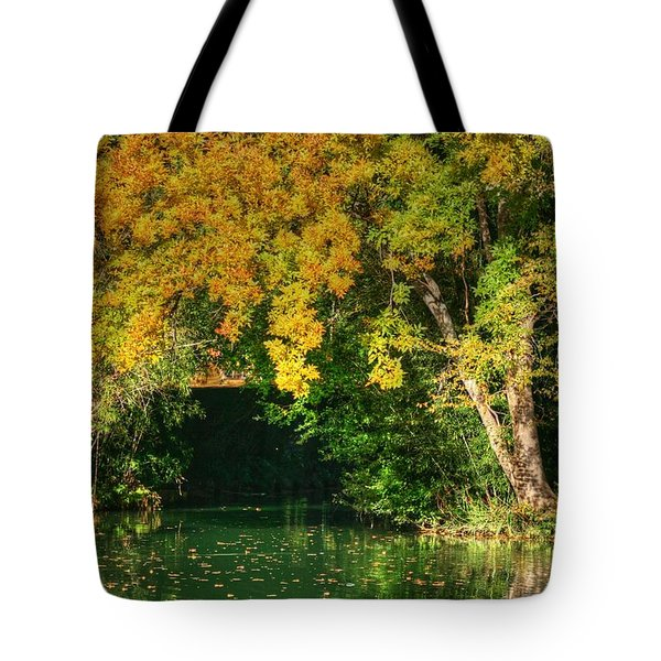 Autumn Pond Tote Bag by Ester  Rogers