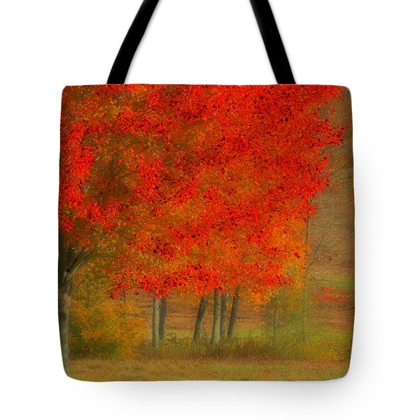 Autumn Popping Tote Bag by Karol Livote