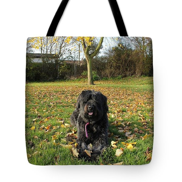 Tote Bag featuring the photograph Autumn Portrait by Vicki Spindler