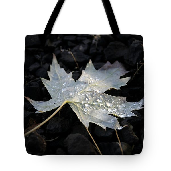 Autumn Rain Tote Bag by Katie Wing Vigil