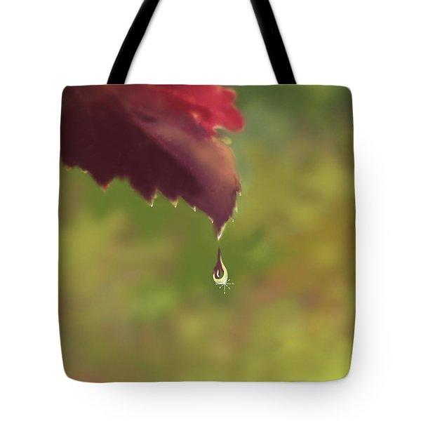 Autumn Rain Tote Bag by Kume Bryant
