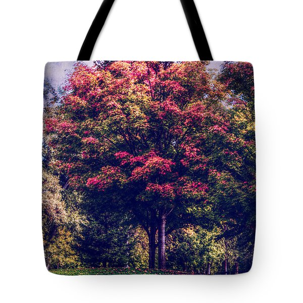 Autumn Rainbow Tote Bag by Melanie Lankford Photography