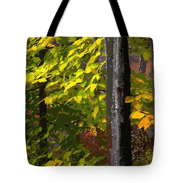 Autumn  Tote Bag by Randy Pollard