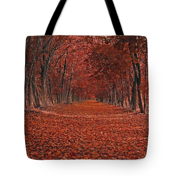 Tote Bag featuring the photograph Autumn by Raymond Salani III