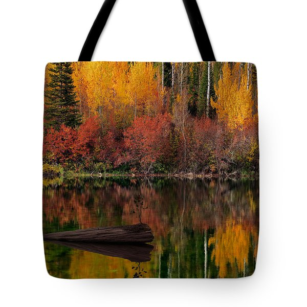 Autumn Reflections Tote Bag by Leland D Howard