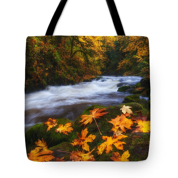 Autumn Returns Tote Bag by Darren  White