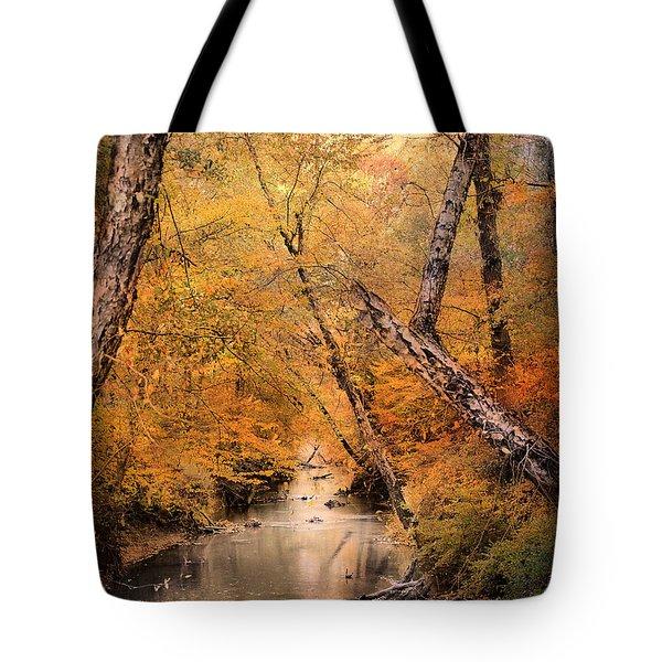 Autumn Riches 1 Tote Bag by Jai Johnson