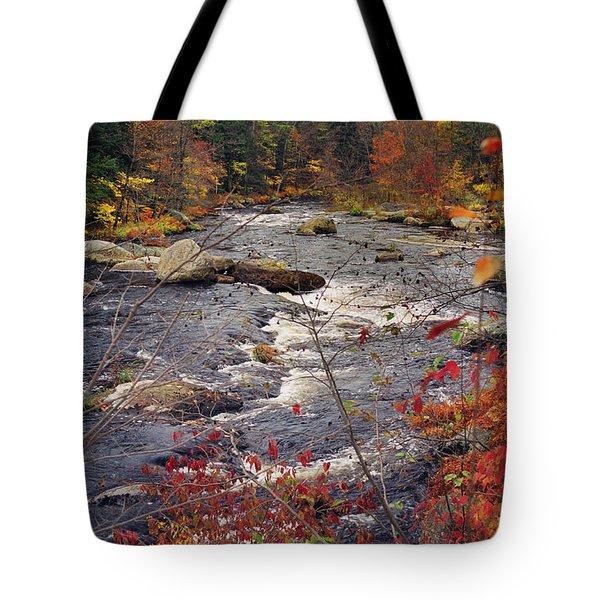 Autumn River Tote Bag by Joann Vitali