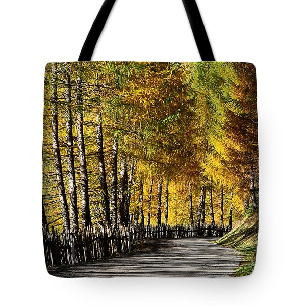 Winding Road Through The Autumn Trees Tote Bag