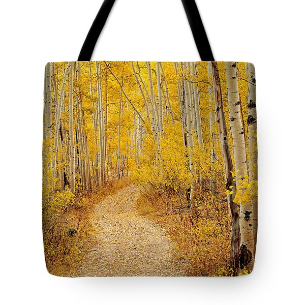 Autumn Road Tote Bag by Leland D Howard