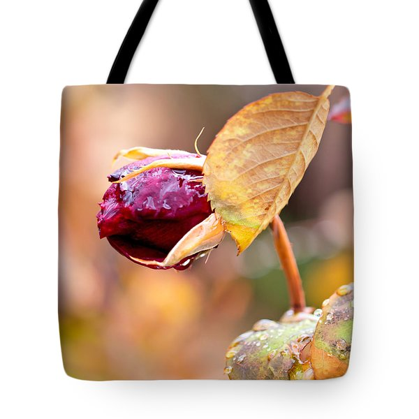 Tote Bag featuring the photograph Autumn Rosebud by Rona Black