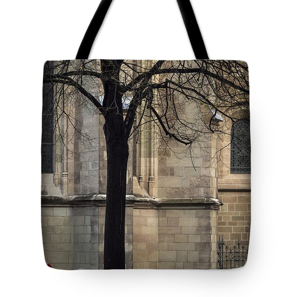 Tote Bag featuring the photograph Autumn Silhouette by Muhie Kanawati