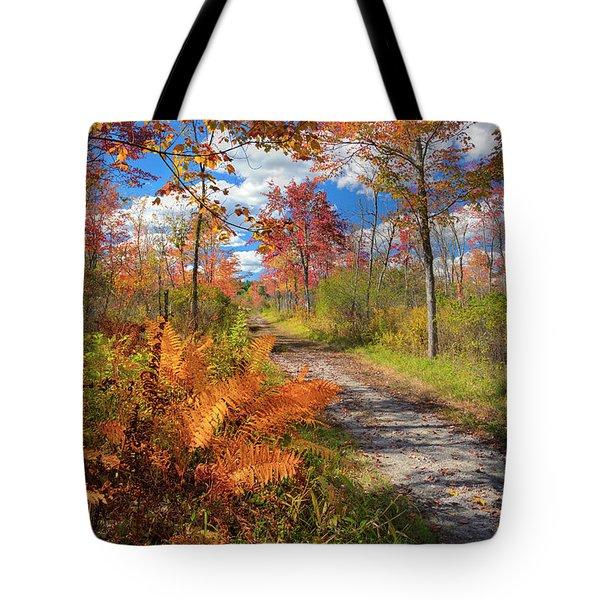 Autumn Splendor Tote Bag by Bill Wakeley